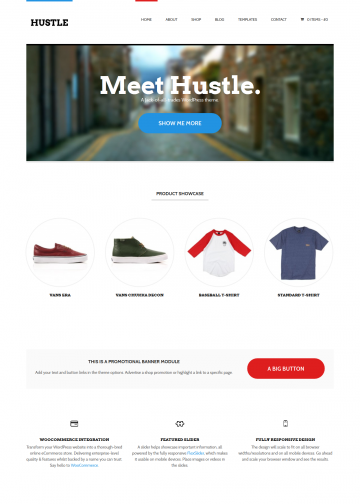 demo2.woothemes.com-hustle