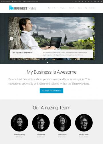 organicthemes.com-demo-business